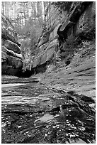 Entrance of the Subway, Left Fork of the North Creek. Zion National Park, Utah, USA. (black and white)