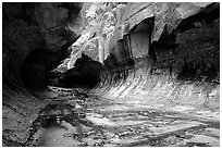 The Subway, a tunnel shaped like a round tube, Left Fork of the North Creek. Zion National Park, Utah, USA. (black and white)
