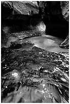 Water flowing in pools in the Subway, Left Fork of the North Creek. Zion National Park, Utah, USA. (black and white)