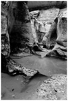 Pools and sculptured sandstone walls, the Subway, Left Fork of the North Creek. Zion National Park ( black and white)