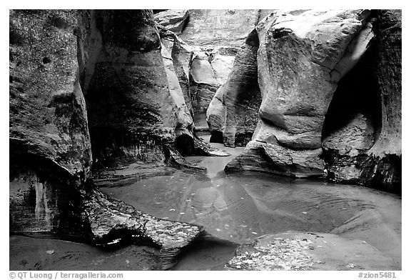 Pools and rock walls sculptured by fast flowing water, the Subway, Left Fork of the North Creek. Zion National Park (black and white)
