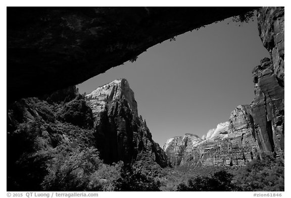 Canyon seen from Weeping Rock alcove. Zion National Park (black and white)
