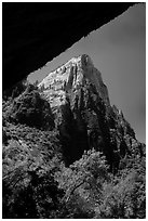 Peak from Weeping Rock alcove. Zion National Park ( black and white)