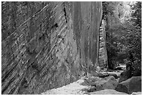 Tall steep cliff, Hidden Canyon. Zion National Park ( black and white)