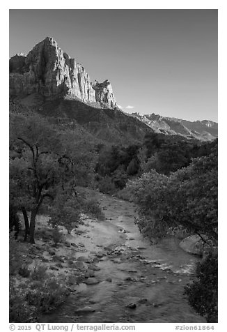 Virgin River and Watchman in summer. Zion National Park (black and white)