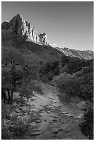 Virgin River and Watchman in summer. Zion National Park ( black and white)