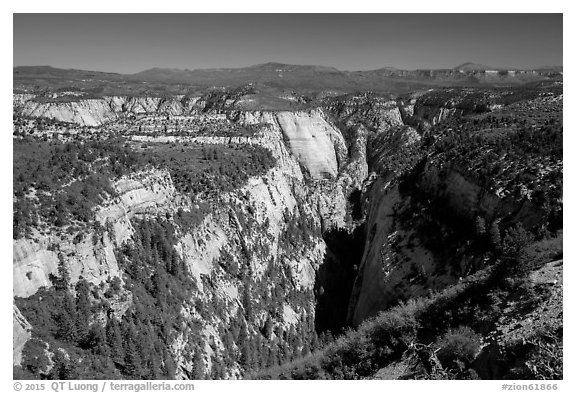 Mystery Canyon from the rim. Zion National Park (black and white)