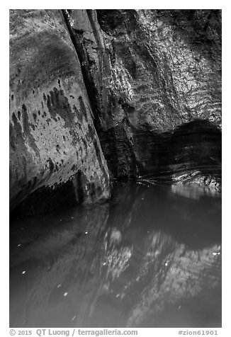 Mystery Springs pool, Mystery Canyon. Zion National Park (black and white)