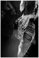 Slot canyon reflections, Pine Creek Canyon. Zion National Park ( black and white)