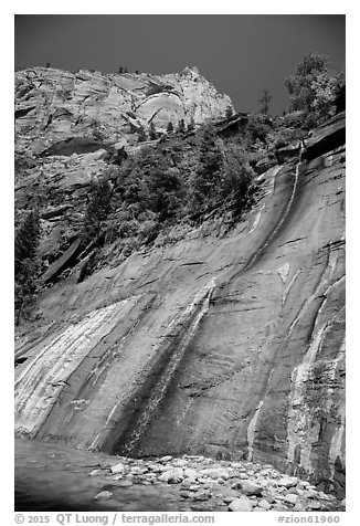 Mystery Falls. Zion National Park (black and white)