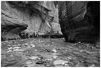 Bend of the Virgin River in the Narrows. Zion National Park ( black and white)