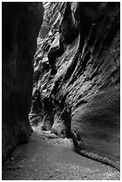 Dark passage in Orderville Narrows. Zion National Park ( black and white)
