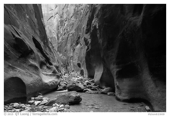 Orderville Narrows. Zion National Park (black and white)