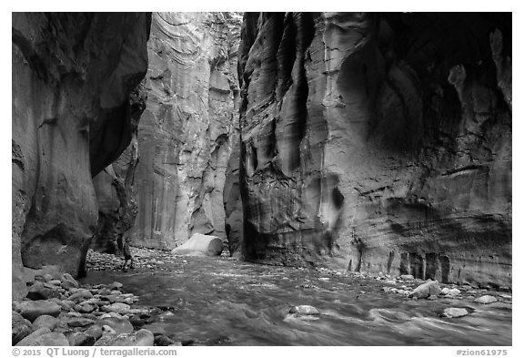 Black and white picture photo visitor looking the narrows zion national park