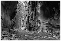 Virgin River between steep and tall walls of the Narrows. Zion National Park ( black and white)