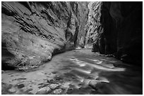 Narrows of the North Fork of the Virgin River. Zion National Park ( black and white)