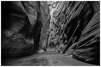 Soaring dark walls, the Narrows. Zion National Park ( black and white)