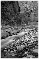 Colorful boulders and narrow channel of the Virgin River. Zion National Park ( black and white)