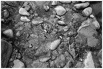 Rocks and oils. Zion National Park ( black and white)
