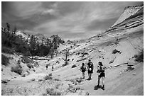 Hikers on slickrock. Zion National Park ( black and white)