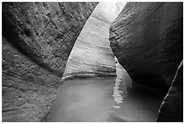 Water in the narrows of Keyhole Canyon. Zion National Park ( black and white)