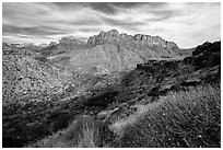 North Fork. Zion National Park ( black and white)