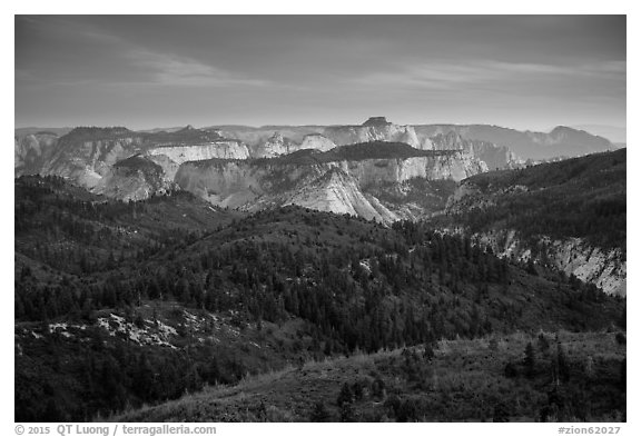 View over forests and canyons from Lava Point. Zion National Park (black and white)