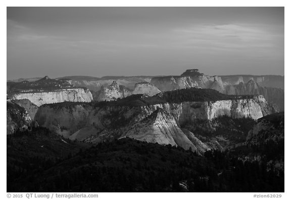 Forested plateaus and canyons at sunset from Lava Point. Zion National Park (black and white)