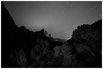 Trees and Watchman at night. Zion National Park ( black and white)