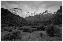 Towers of the Virgin, stormy sunrise. Zion National Park ( black and white)