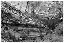 Echo Canyon. Zion National Park ( black and white)