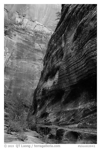 Echo Canyon and smooth face of Cable Mountain. Zion National Park (black and white)