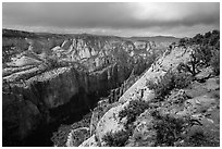 North Zion Canyon from above, Observation Point. Zion National Park ( black and white)