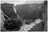 Hikers on East Rim trail. Zion National Park ( black and white)