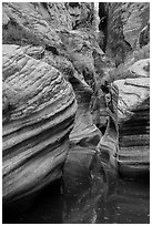 Scuptured canyon and reflections, Echo Canyon. Zion National Park ( black and white)