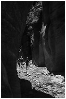 Hiking in narrow dry gorge, Orderville Canyon. Zion National Park ( black and white)