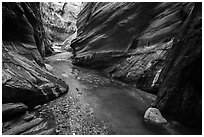 Stream flowing, Orderville Canyon. Zion National Park ( black and white)