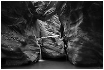 Large boulder creating waterfall with a second boulder suspended above, Orderville Canyon. Zion National Park ( black and white)
