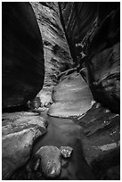 Stream in slot canyon, Orderville Canyon. Zion National Park ( black and white)
