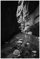 Stream and glowing wall, Orderville Canyon. Zion National Park ( black and white)