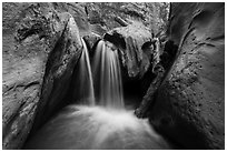 Waterfall and jammed log, Orderville Canyon. Zion National Park ( black and white)