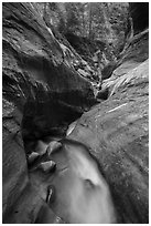 Narrow watercourse in Orderville Canyon. Zion National Park ( black and white)