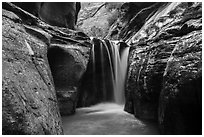 Waterfall, Orderville Canyon. Zion National Park ( black and white)