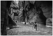 Hikers in the Narrows below Orderville Junction. Zion National Park ( black and white)
