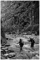 Hikers in the Narrows in late afternoon. Zion National Park ( black and white)