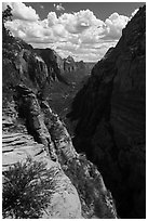 Zion Canyon from Angels Landing. Zion National Park ( black and white)