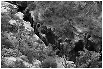 Pine Creek Canyon from above. Zion National Park ( black and white)