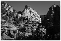 Deertrap Mountain. Zion National Park ( black and white)