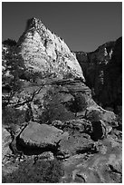 Deertrap Mountain, early morning. Zion National Park ( black and white)
