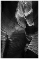 Sculptural walls, Keyhole Canyon. Zion National Park ( black and white)